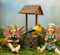 Make a wish with the fairies at our enchanted mini garden.