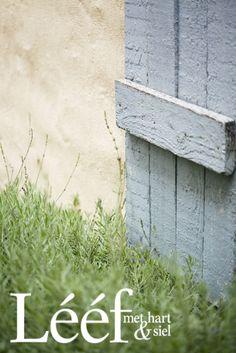Natuur/ aards, tuin/garden.www.leef.co.za