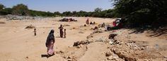 Hundreds dying from hunger as severe drought grips Somalia