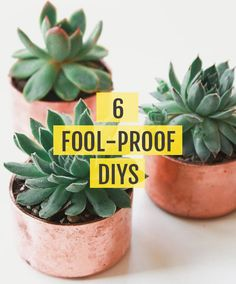 Get inspired with easy, creative DIY ideas at Darby Smart.