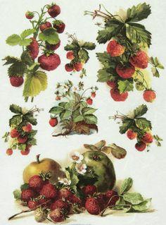 Ricepaper/Decoupage paper, Scrapbooking Sheets  Vintage Strawberry