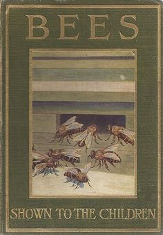 Bees shown to the children  C. Arden - Bookseller