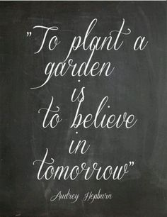 garden quotes to plant a garden is to believe in tommorrow Audrey Hepburn Great Quotes, Quotes To Live By, Me Quotes, Inspirational Quotes, Motivational Quotes, Positive Quotes, Famous Quotes, Motivational Wallpaper, Quotes Images