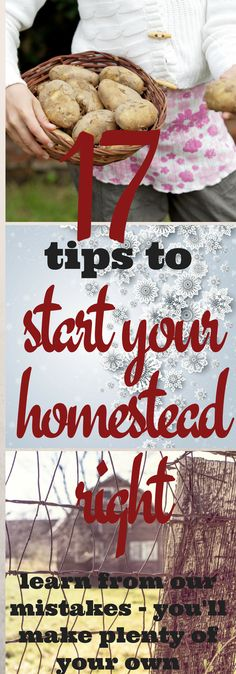 Or at least avoid OUR mistakes (you can make your own). Here are 17 things to be aware of as you start homesteading.