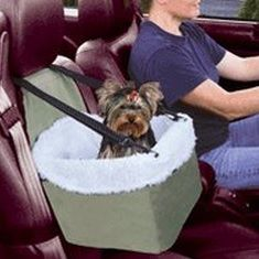 Best Car Travel Accessories for Dogs Booster Seat