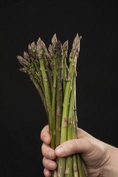 Por Félix Maocho 14/3/2013 El espárrago, (Asparagus officinalis), o esparraguera es una planta que tiene su origen en Asia Menor. Pertenece a la familia Asparagaceae, de la clase de las liliáceas L...