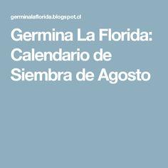 Germina La Florida: Calendario de Siembra de Agosto