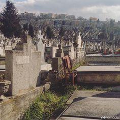 Cimetière sur le flanc de la colline, Cluj-Napoca en #Roumanie.
