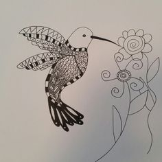 Hummingbird, Pen and Ink, Drawing, Illustration ($10) ❤ liked on Polyvore featuring home, home decor, wall art, ink drawing, hummingbird wall art, paper wall art and hand drawing