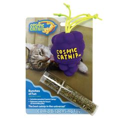 OurPets Catnip Vinyl Refillable Grape Cat Toy, Bunches of Fun -- Check out the image by visiting the link. (This is an affiliate link and I receive a commission for the sales) Kitten Toys, Cat Training Pads, Cat Id Tags, Cat Shedding, Catnip Toys, Cat Fleas, Cat Memorial, Cat Grooming, Cool Cats
