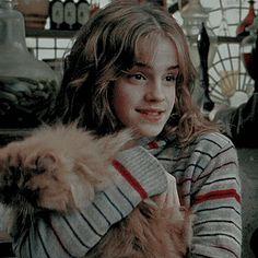 Boo is orange Harry Potter Hermione Granger, Harry Potter Girl, Harry Potter Icons, Mundo Harry Potter, Harry Potter Tumblr, Harry James Potter, Harry Potter Pictures, Harry Potter Fandom, Harry Potter Characters
