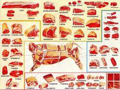 meat diagram - home ec.