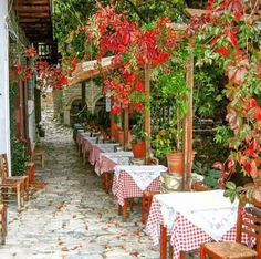 Makrinitsa, Pilio,Greece Greek Flowers, Places In Greece, Forest Mountain, Tree Forest, Flowering Trees, Greece Travel, Places To Visit, Around The Worlds, Vacation