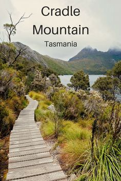 Discover Tasmania's Cradle Mountain at Lake St. Clair National Park