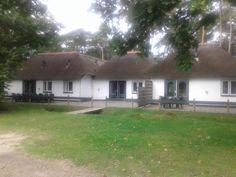 18 persoons bungalow op Vakantieoord Het lorkerbos op de Veluwe
