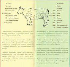 tagli carne bovina con indicazioni delle ricette a cui abbinare ogni parte