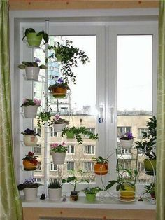 Potted Plants for Window Treatment Decor, Home Room Design, Apartment Garden, Home Decor Bedroom, Home Decor, Plant Shelves, Building A Container Home, House Plants Decor, Outdoor Garden Decor