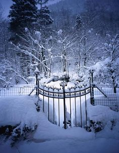 Snowy gate in Vermont (photo via agoodthing)