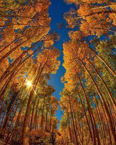 #paisagem #fotografia #fotografo #fotos #cursofotografia / Dicas e Cursos de… #paisagem #fotografia #fotografo #fotos #cursofotografia