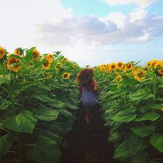 . Pinterest//@serahrose                 Instagram@serah.rose