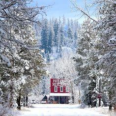 «Winter doesn't slow down the Polebridge Mercantile. Photo via @lucybee985. #Montana #MontanaMoment #instalove #winter #GlacierMT»