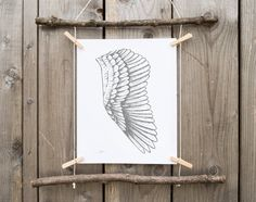 GRAY WING and white,home decor art, drawing feather wall art, black white poster, black grey decor, style gifts, fly, wings angel, nursery. ALA tonalidades grises,home decor art,dibujo a mano, lamina plumas pared, arte poster,decoracion gris y negro, regalo mujer, fly, alas angel