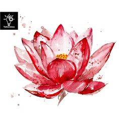 Pink lotus watercolor illustration isolated on white background. Hand painted l… Pink lotus watercolor illustration isolated on white background. Flower with watercolor splashes, stains. Fake Tattoos, Mini Tattoos, Temporary Tattoos, Symbol Tattoos, Circle Tattoos, Watercolor And Ink, Watercolor Illustration, Watercolor Flowers, Tattoo Watercolor