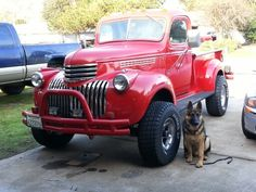 hank the 46 being guarded by chuck norris 10 month old german shepard Hot Rod Trucks, Gmc Trucks, Old Chevy Pickups, Pick Up 4x4, Chevy Van, Old Pickup, Classic Chevy Trucks, Chuck Norris, True Art