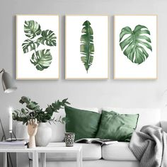 Herb Art, Cactus Photography, Cactus Wall Art, Watercolor Plants, Art Prints For Home, House Plants Decor, Plant Painting, Green Theme, Botanical Wall Art