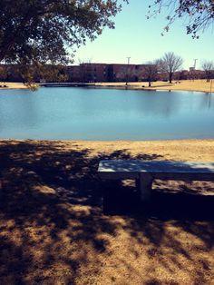 NMSU Duck Pond