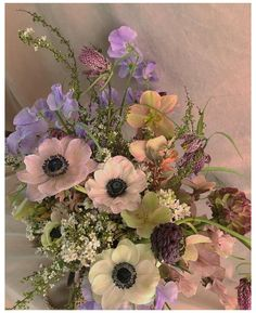 Luxury Flowers, My Flower, Beautiful Flowers, Spring Aesthetic, Flower Aesthetic, Flower Garden Pictures, Pictures Of Spring Flowers, Photocollage, Arte Floral