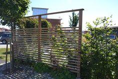 Planera rum med häckväxter | Lykkans Designträdgårdar