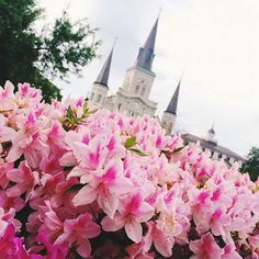 Spring- Jackson Square - New Orleans