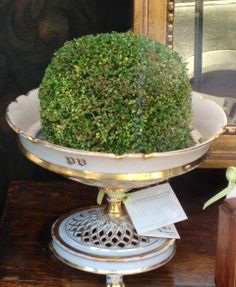 love this- put an indoor plant in a raised dish. I saw this the other day with a shallow pot on a cake stand.