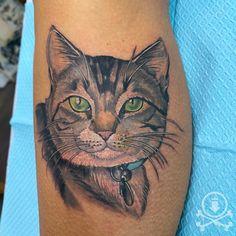 Adorable kitty portrait tattoo by Meghan Patrick. #12ozstudios #team12oz #tattoo #tattoos #tattooed #tattooing #tattooism #tattooart #tattooartist #tattooer #tattooist #art #artstudio #tattooshop #tattoostudio #ink #inked #colortattoo #colortattoos #colorportrait #colorportraittattoo #cat #cats #kitty #kitten #cattattoo #kittytattoo #animaltattoo #pettattoo #pets
