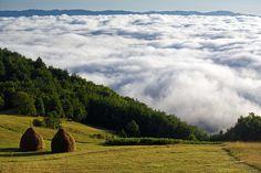 Mountain Tara, #Serbia