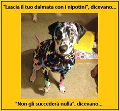 Barzelletta 065