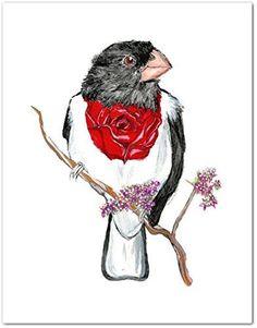 Rose Breasted Grosbeak Bird Watercolor Art Print 8 x 10. Whimsical Bird Art Print, Rose Breasted Grosbeak. Archival Print from my Original Watercolor Painting, 8 x 10 inch, unframed.