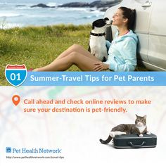 #Summer #Travel #Tips for #Pet Parents