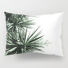 "Yucca Pillow Sham by ARTbyJWP from Society6 #sham #pillowsham #cushions #yucca  Our Pillow Shams merge creativity with premium fabrics, bringing unique style to your bedroom. Each design is printed on soft, fuzzy 100% polyester for rich colors and sharp images that don't fade. The reverse side is a white 50/50 poly-cotton blend with an envelope closure down the middle to keep pillows snug. Machine wash cold (no bleach), tumble dry low. Available in standard (20"" x 26"") or king (20"" x 36"")…"