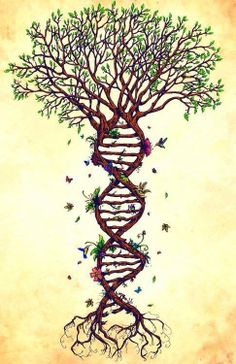 DNA Tree of Life.. T