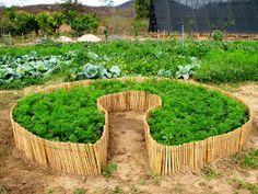 Raised Herb Garden, Vegetable Garden, Bamboo Garden, Indoor Garden, Garden Trees, Garden Bridge, Greenhouse Restaurant, Eco Buildings, Diy Home Decor On A Budget