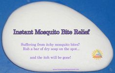 Instant Mosquito Bite Relief! More info here: http://homesteadingsurvival.com/instant-mosquito-bite-relief/