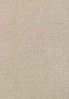 FLANDERS, Grey, T14164, Collection Texture Resource 4 from Thibaut