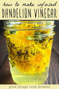When dandelions are abundant in springtime make this infused dandelion vinegar! It has a subtle sweetness and bitterness combined and can be used to make a wonderful salad dressing. Dandelion Jelly, Vinegar Uses, White Balsamic Vinegar, Dandelion Recipes, Infused Oils, Wild Edibles, Greens Recipe, Fermented Foods, Edible Flowers