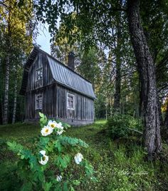🇫🇮 Weathered barn by the forest (Finland) by Asko Kuittinen 🌲 Cottage Homes, Rustic Charm, Country Living, Finland, Barn, Landscape, House Styles, Nature, Cottages