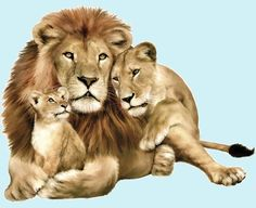 animal families | Lion Family Jungle Animals Peel and Stick Mural - Wall Sticker Outlet