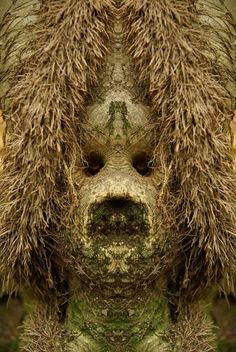 Dream Creatures Photographer Elido Turco photographs trees while taking a walk in the woods, then mirrors them when he gets home. This gives the trees an eerie tree spirit look. In the link above, you. Weird Creatures, Fantasy Creatures, Tree Faces, Disney Artists, Hidden Face, Tree Photography, Tree Silhouette, Trendy Tree, Tree Bark