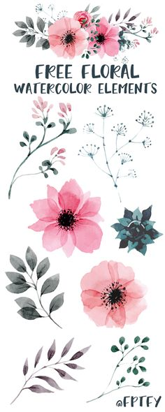 Free Watercolor Floral Elements: For today's free digital good, I have for you some pretty awesome PNG floral watercolor elements! There are 15 individual elements plus a floral bouquet included for personal and commercial use! Watercolor Clipart, Watercolour Painting, Floral Watercolor, Free Watercolor Flowers, Watercolor Succulents, Watercolor Ideas, Watercolor Design, Watercolor Techniques, Watercolours