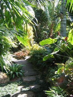 tropical garden design tropical garden designs home decor catalog landscape design 375x500 #TropicalGarden